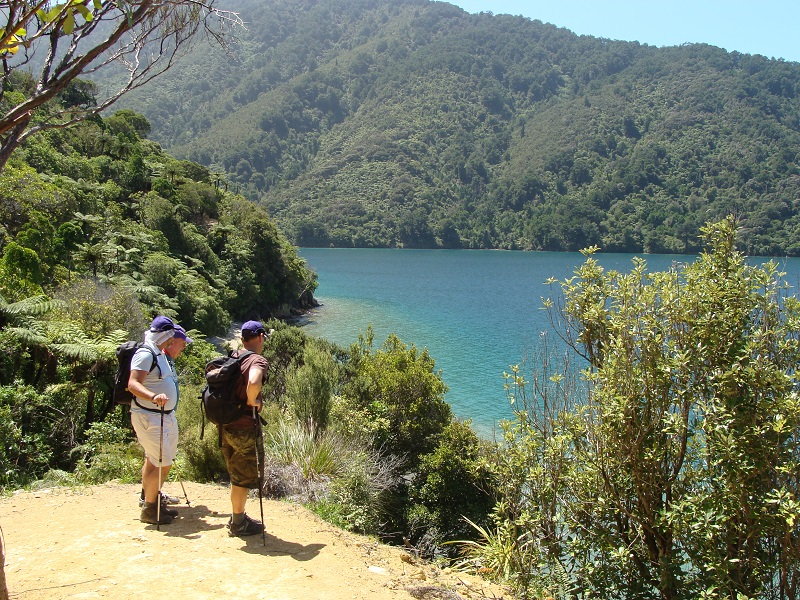 4 Day Freedom Walk - Queen Charlotte Track