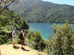 WINTER & SPRING SPECIAL 4 Day Freedom Walk - Queen Charlotte Track