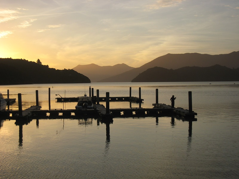 5 Day Freedom Walk - Queen Charlotte Track, 4 days walking with 1 rest day.