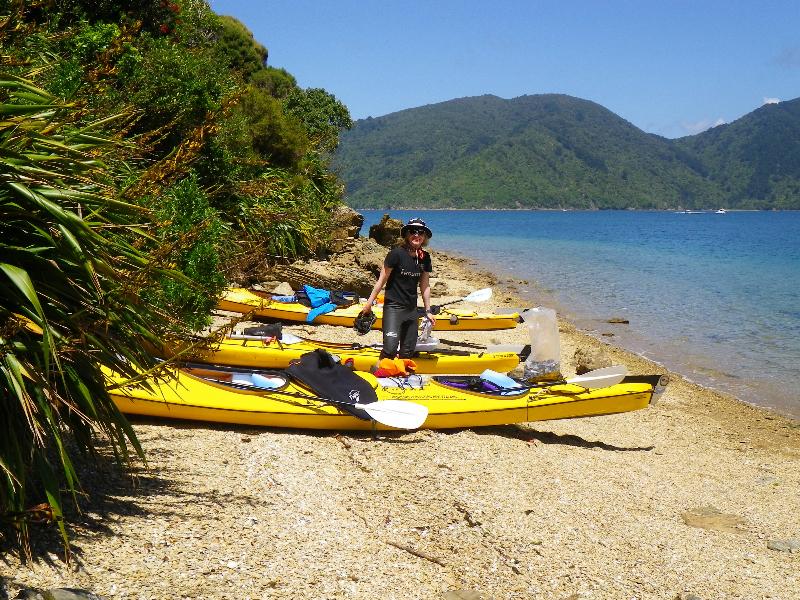 Sea Kayak Rental - One & Multi Day