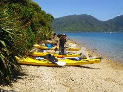 Sea Kayak Rental - One & Multi Day