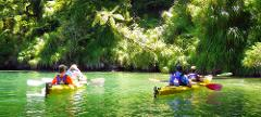 1 Day Guided Sea Kayak - Queen Charlotte Sound