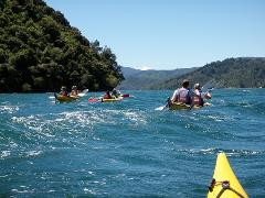 Sea Kayak Rental - Half Day