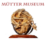 Mütter Museum