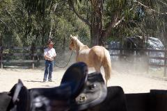 4 day horsemanship intensive School holiday program