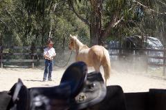 4 day horsemanship intensive School holiday program