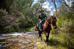 Wild Rivers & Flowers - High Country Pack Horse Ride