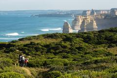 Great Ocean Road Wildlife Tour - Budget Package