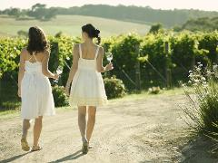 Mornington Peninsula Winery Tour - Relaxed winery package