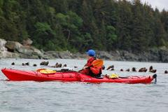 Amalga Harbor Full Day Single Kayak Rentals