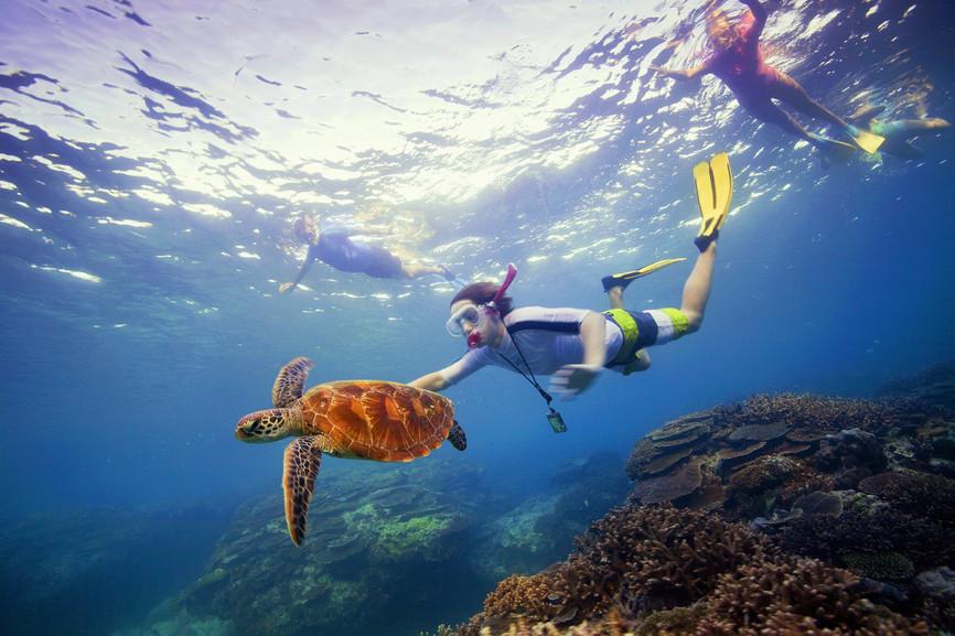 Reef & Rainforest - 4 Days