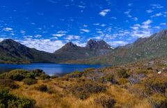 Cradle Mountains Day Tour