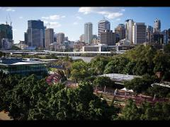 Brisbane Afternoon Tour with Koala Sanctuary