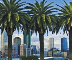 Perth Morning Day Tours