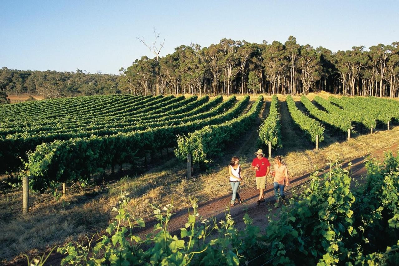 Perth and Margaret River Wine Region