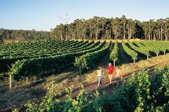 Perth and Margaret River Wine Region - 4 Days
