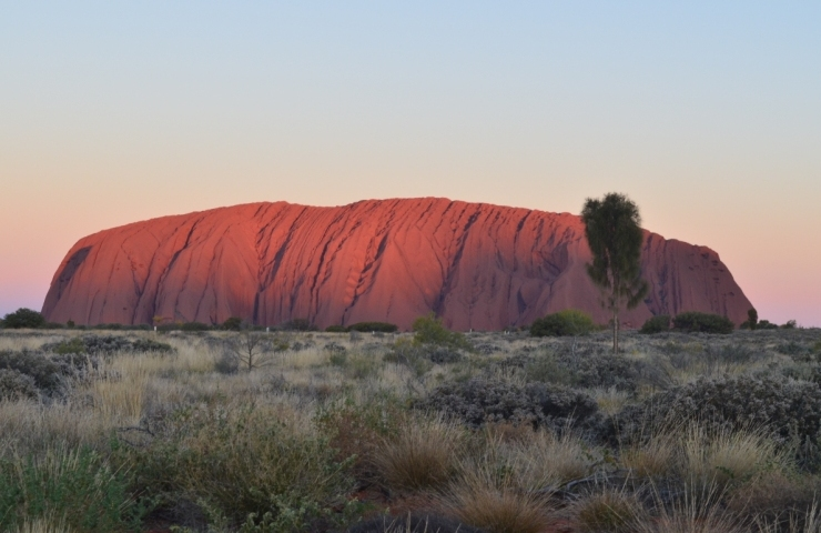 Uluru Base & Sunset Tour
