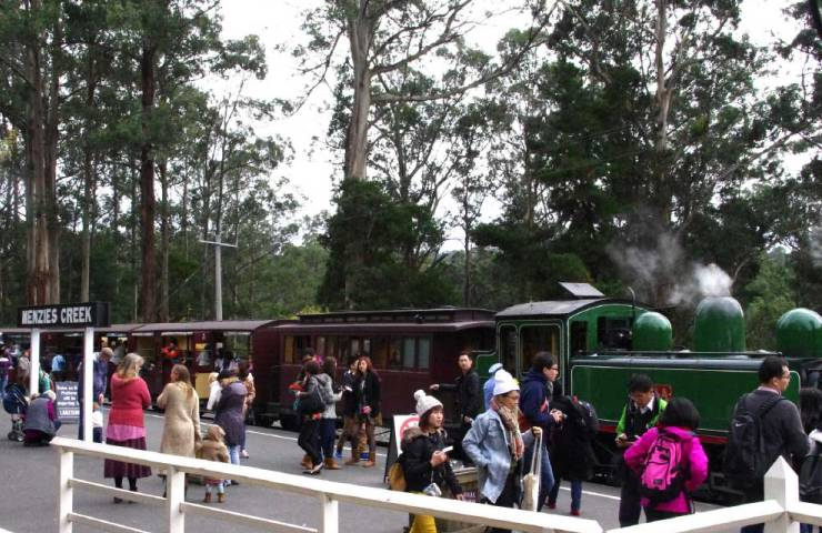 Puffing Billy & Afternoon City Tour