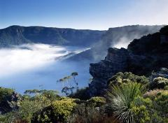 Blue Mountains Express Tour