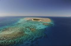 Green Island Reef by Big Cat - Full Day Tour