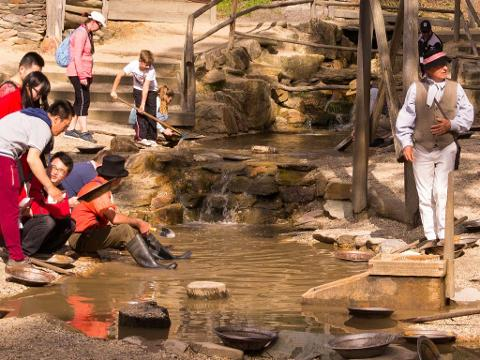 Sovereign Hill The Gold Trail Optional Wildlife At