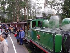 Puffing Billy with Australian Wildlife & Lunch