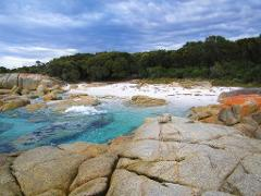 Bay of Fires Day Tour