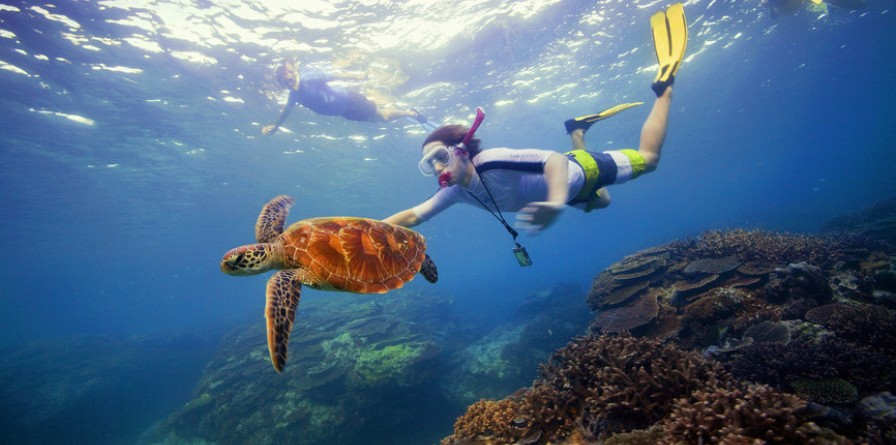 Discover Cairns - 6 Days