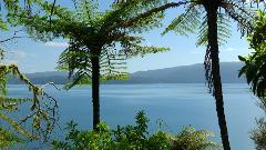 New Zealand Uncut