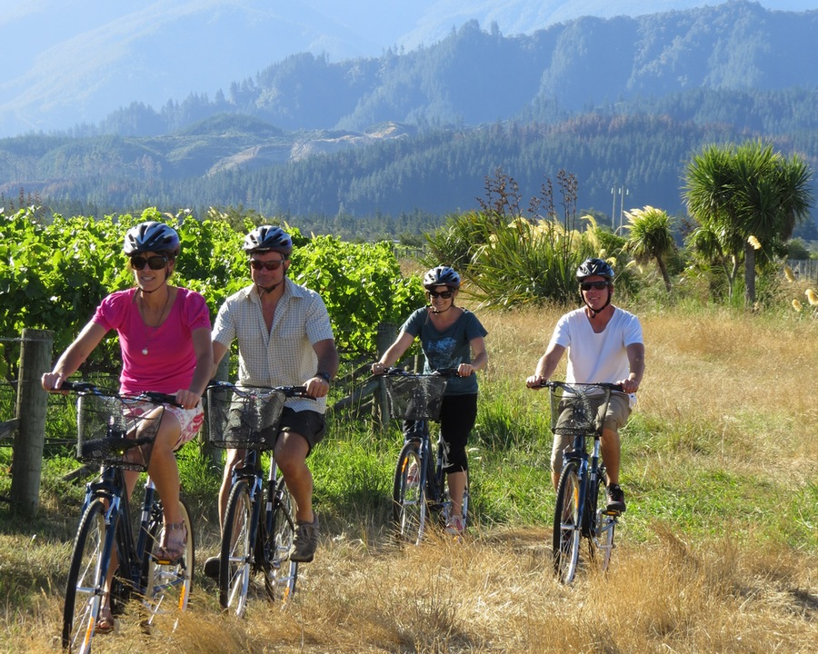 Deluxe Private Full Day Biking Wine Tour
