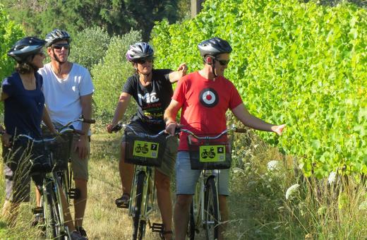 Self Guided Biking Wine Tour - Full Day