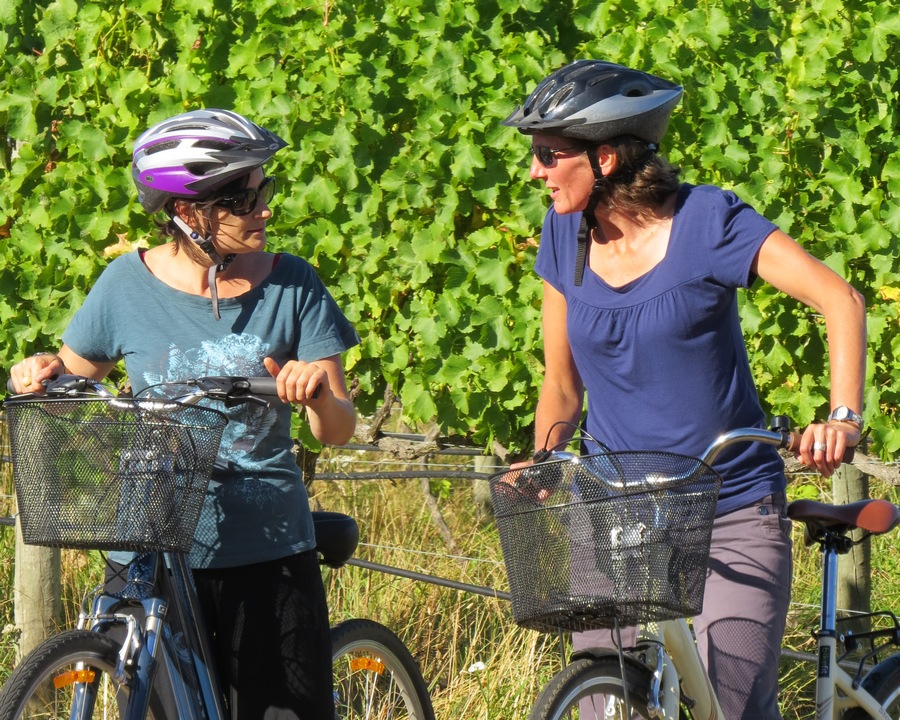 Half Day Guided Biking Wine Tour