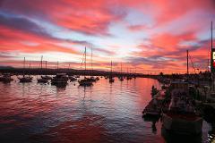Private Rental - Harbor Cruise