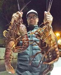Local Lobster Trip (6 Pass Max)