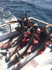 Mako & Thresher Shark Trip