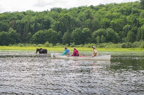 3 Day Canoe Trip