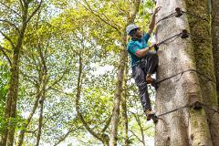 Monteverde - Arboreal
