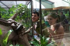 Monteverde - Herpetarium Adventures