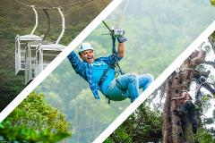 Monteverde - COMBO - Sky Trek & Tram with Arboreal Tree Climbing