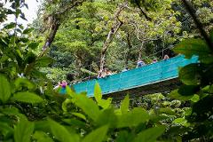 Monteverde - Sky Walk (Guided Tour)