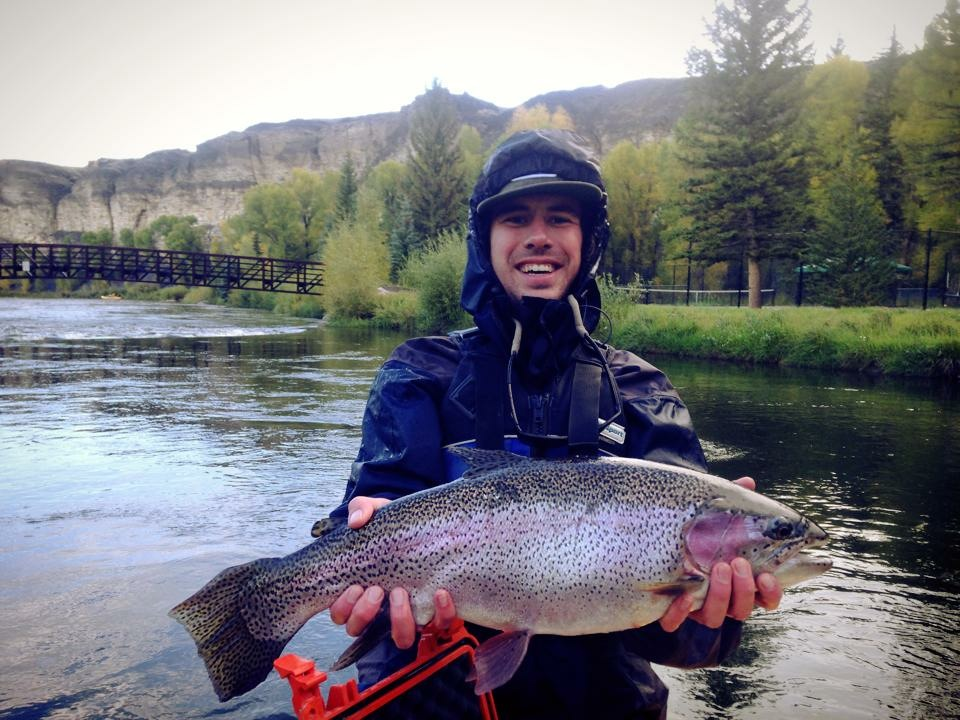 Guided Fly Fishing - Half Day - Colorado River
