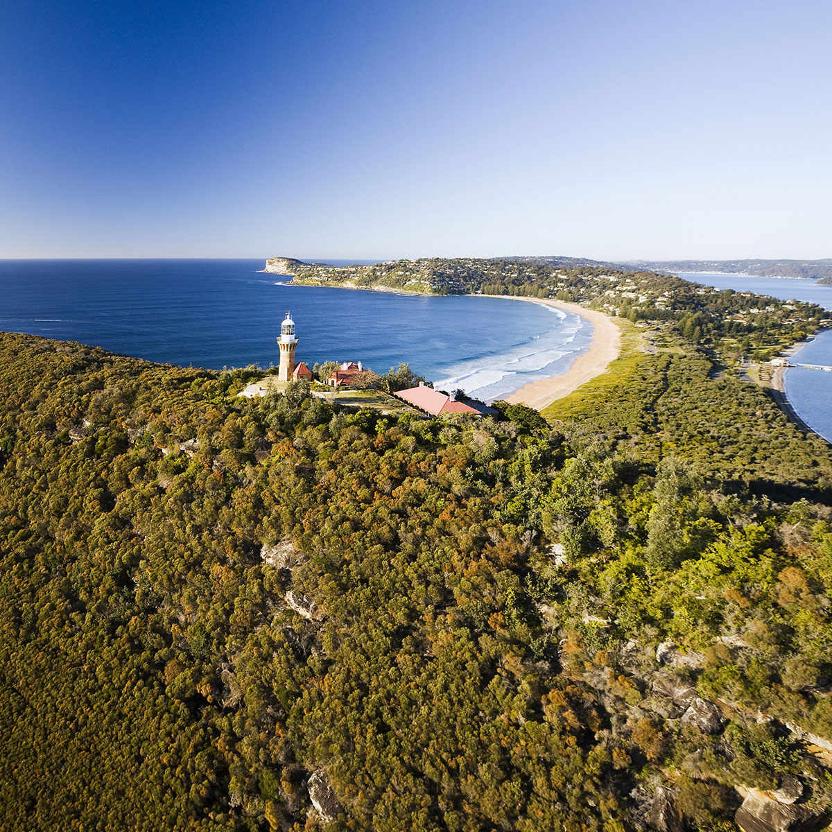 Northern Beaches Tour - Full day