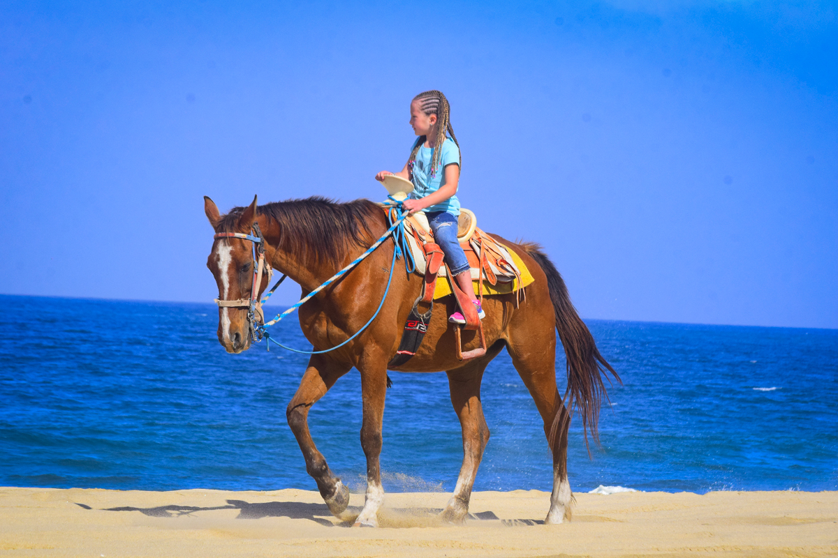 Horseback Riding Beach and Desert Tour