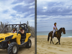 COMBO - UTV & Horseback Riding Tour