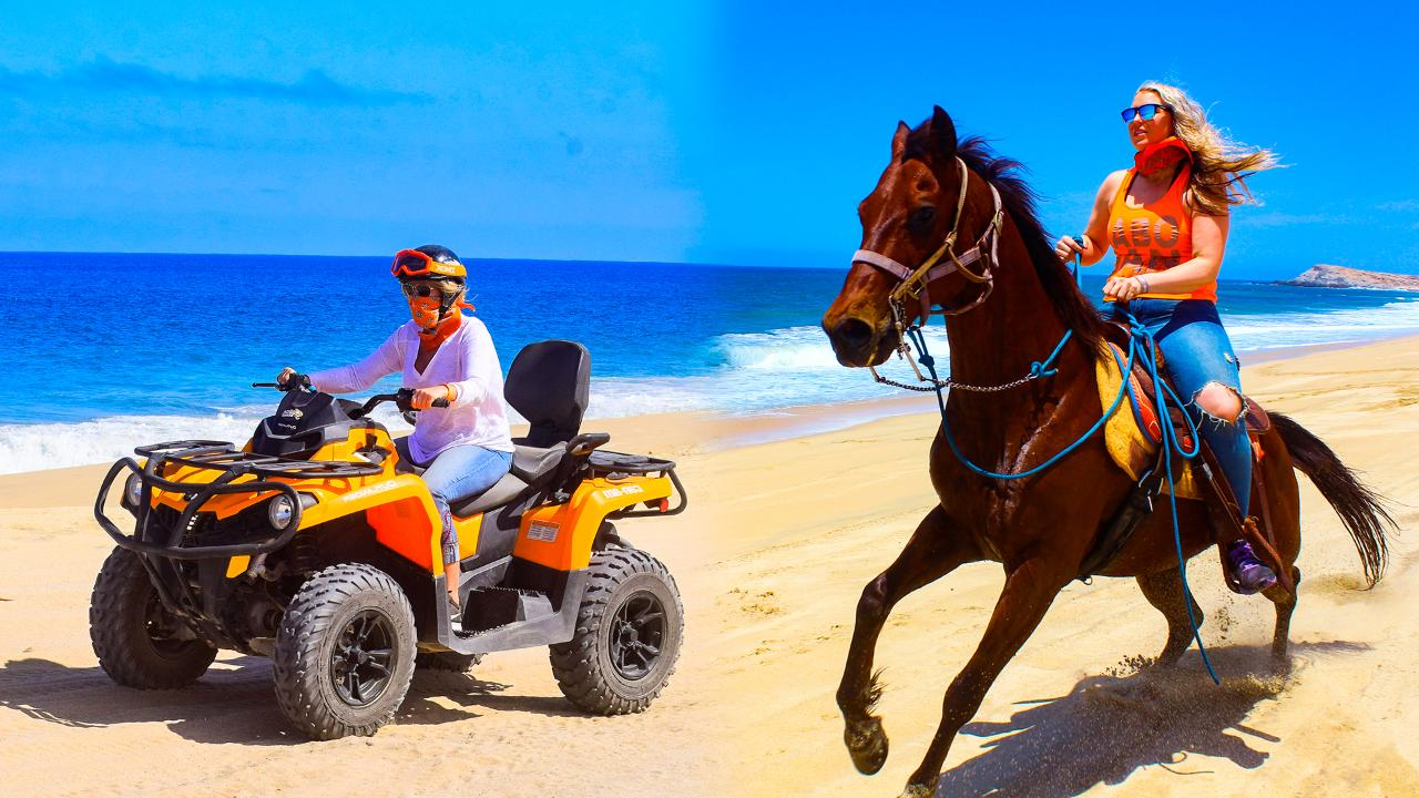 Combo Tour / #Save Tourism of Los Cabos