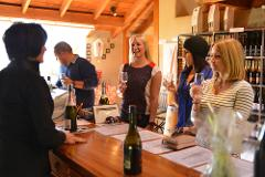 Taste of Marlborough Wine Tour