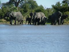 Africa's Falls & Fauna - HIPPO DEAL-EARLY BIRD DEAL