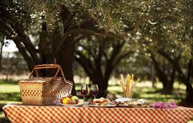 Mendoza > Wineries with Picnic