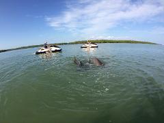Dolphin Jet Ski Tour Estero Bay 2 Hours