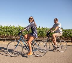 Sonoma Bike Tour